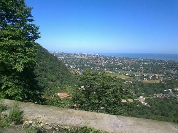 روستای-ساحلی-جنگلی-نجارده_11