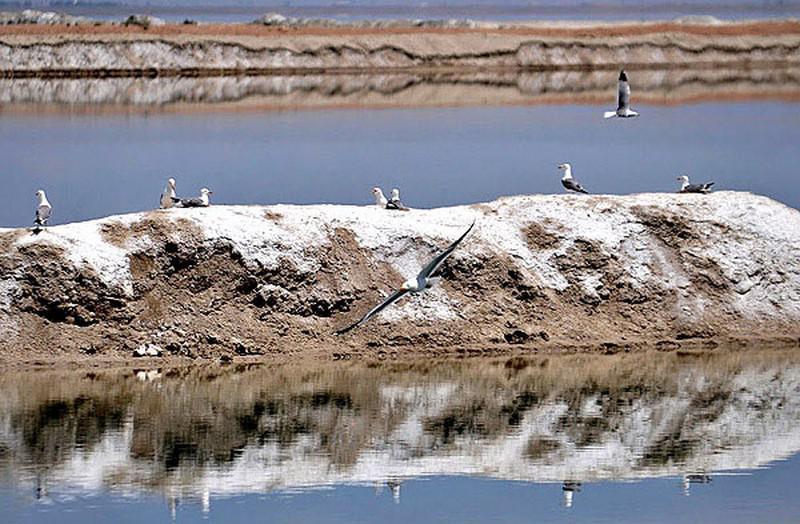 دریاچه-نمک-میقان_12