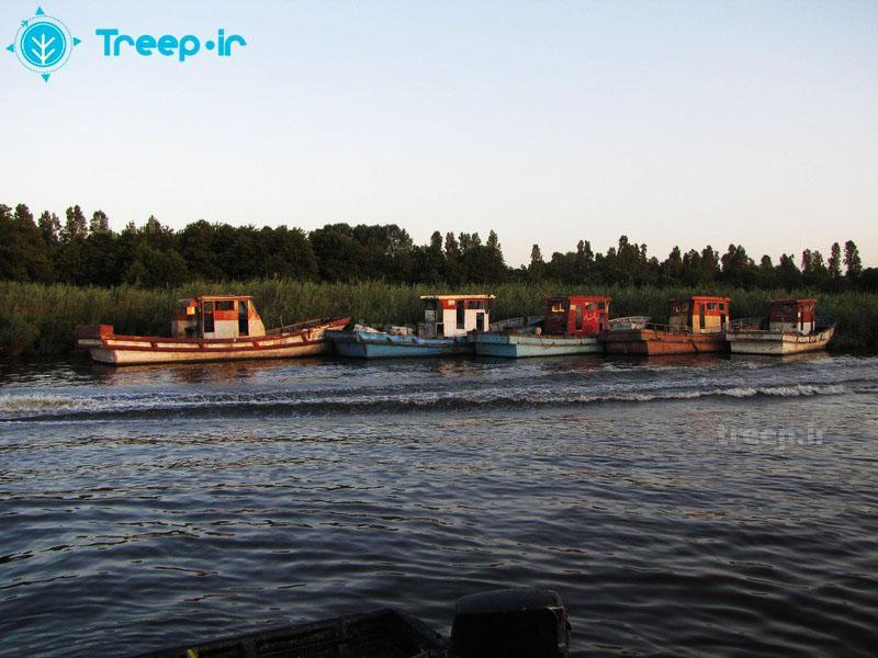 تالاب-انزلی_31