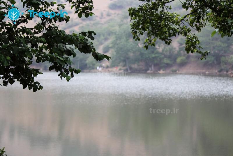 دریاچه-شورمست_2