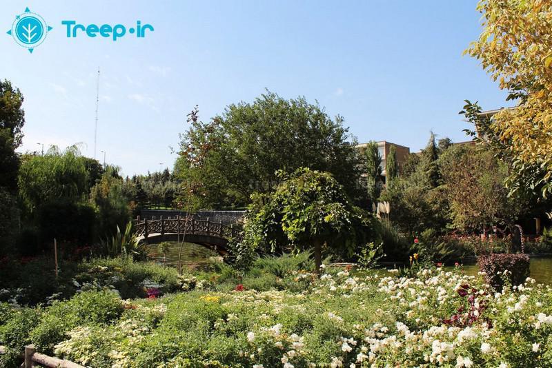باغ-گل-ها_24
