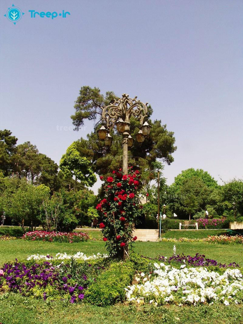 باغ-ارم_14