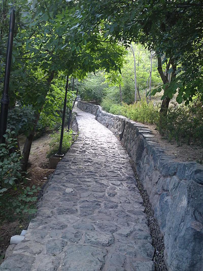 بوستان-جمشیدیه_5