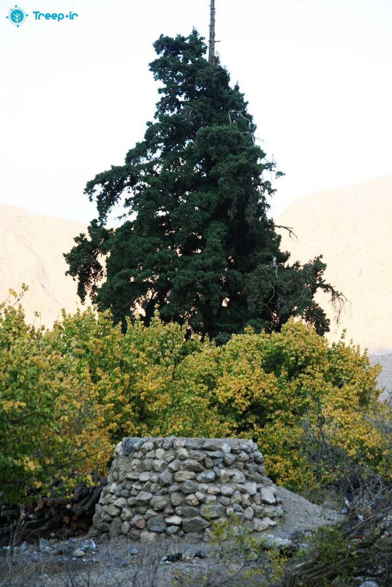 روستای-خرو_8
