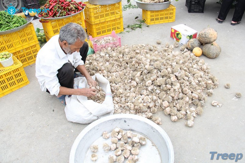 بازار-روز-نوشهر_9