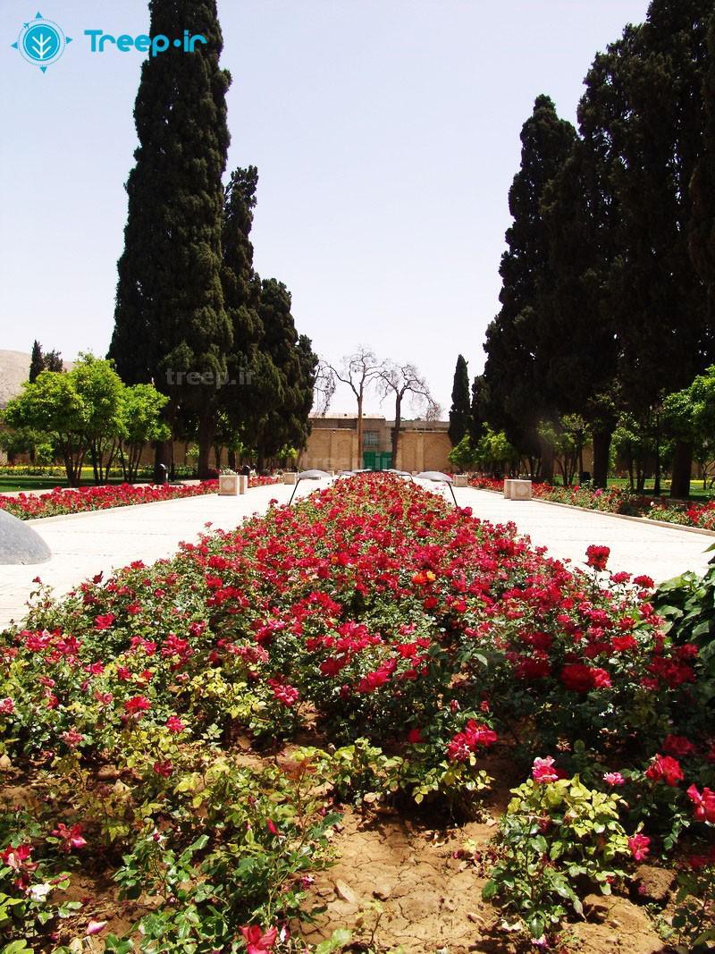 باغ-جهاننما_5