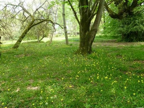 باغ-اکولوژی-نوشهر_27