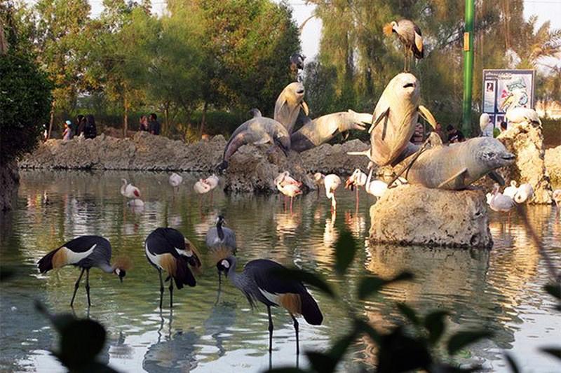 پارک-دلفین-و-باغ-پرندگان_3