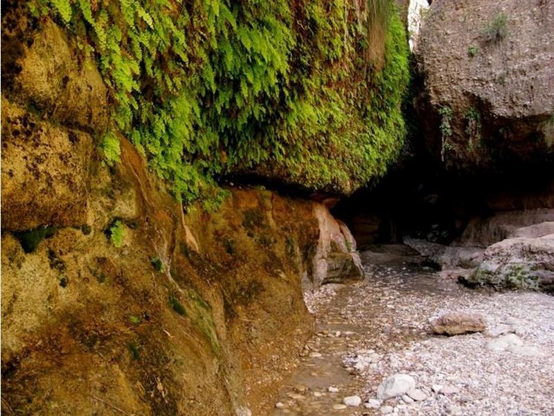 غار-(تنگ)-زینگان_1