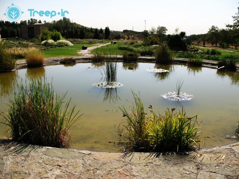 باغ-گياهشناسي-ملي-ايران_14
