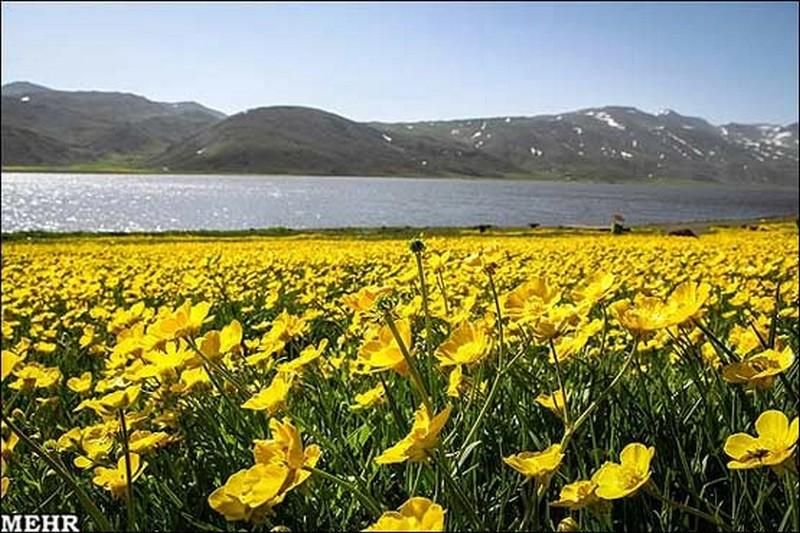دریاچه-نئور_10