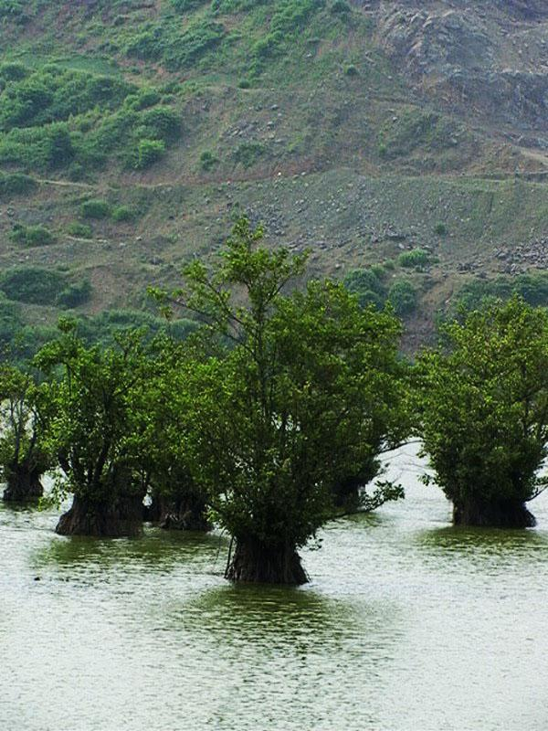 تالاب-استیل-عباس-آباد_9