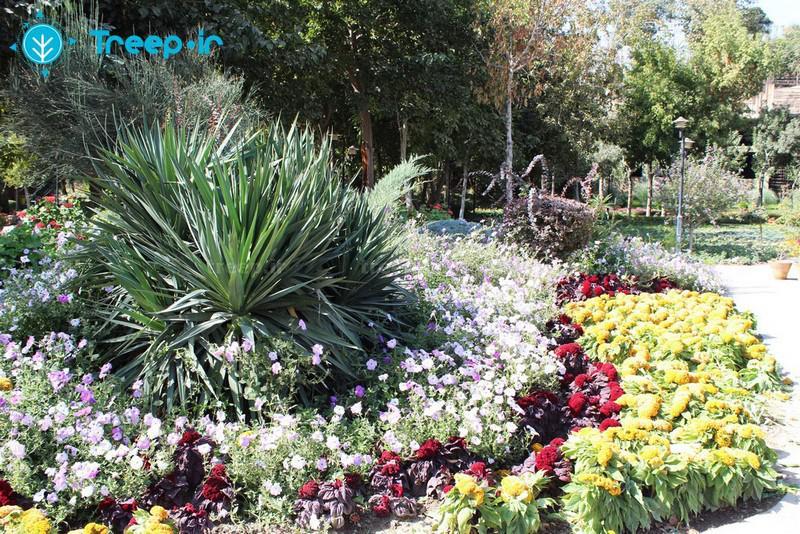 باغ-گل-ها_4