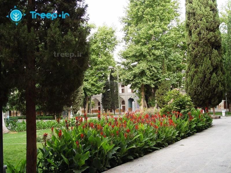 مدرسه-چهارباغ_12