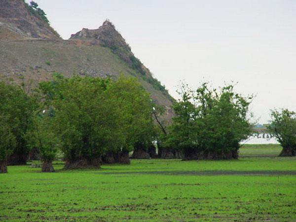 تالاب-استیل-عباس-آباد_5