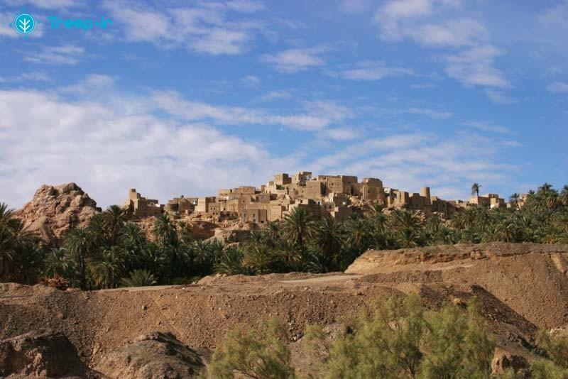 روستای-نایبند_9
