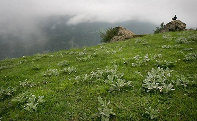 روستای-جواهرده-_9