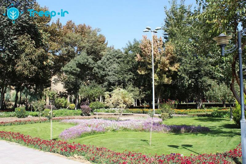 باغ-گل-ها_5
