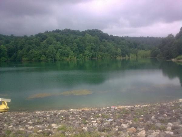 دریاچه-و-جنگل-الیمالات_11