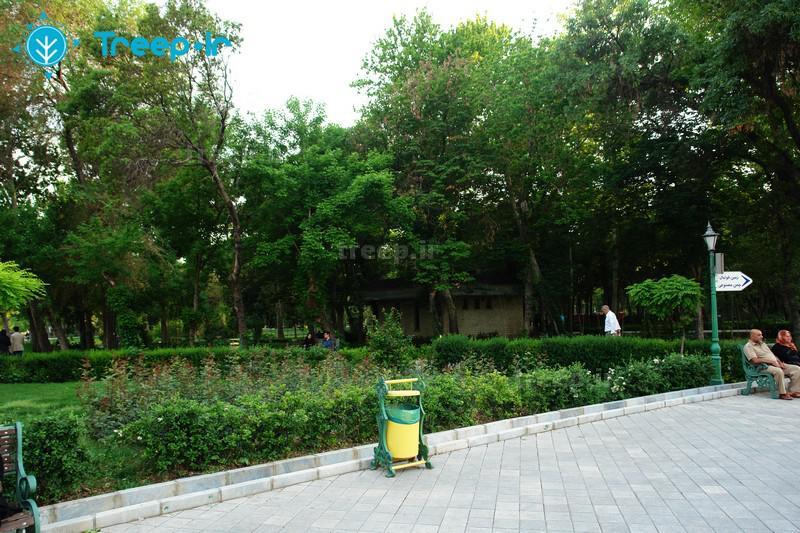 پارک-شهر_37