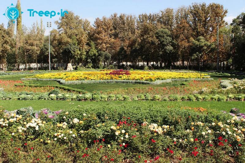 باغ-گل-ها_14