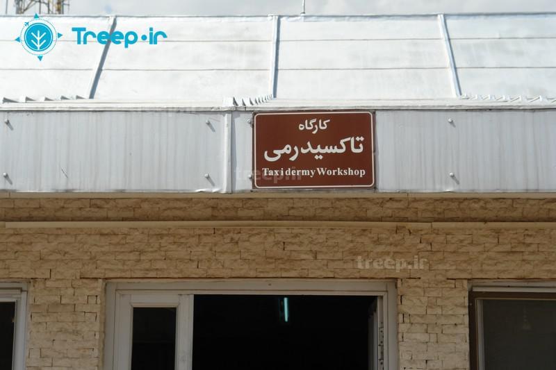موزۀ-آثار-طبیعی-و-حیات-وحش-ایران_49