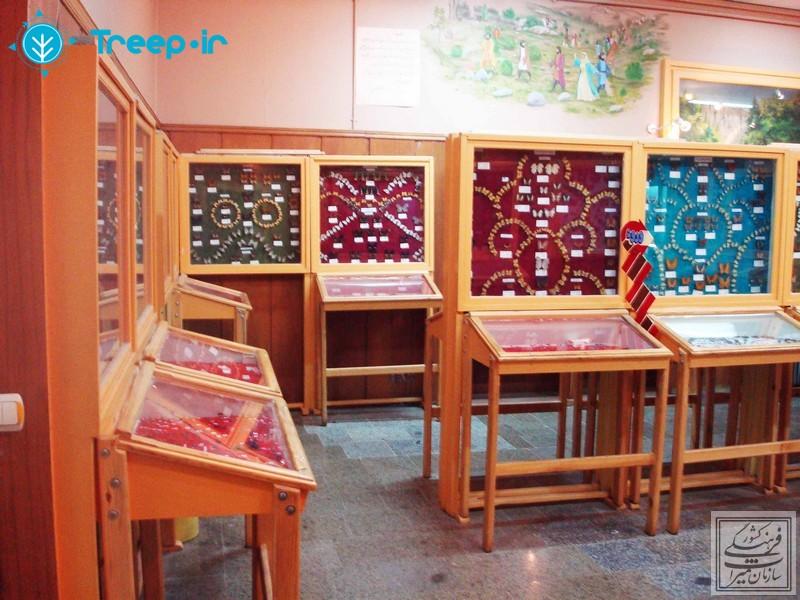 موزه-تاريخ-طبيعي-همدان_13