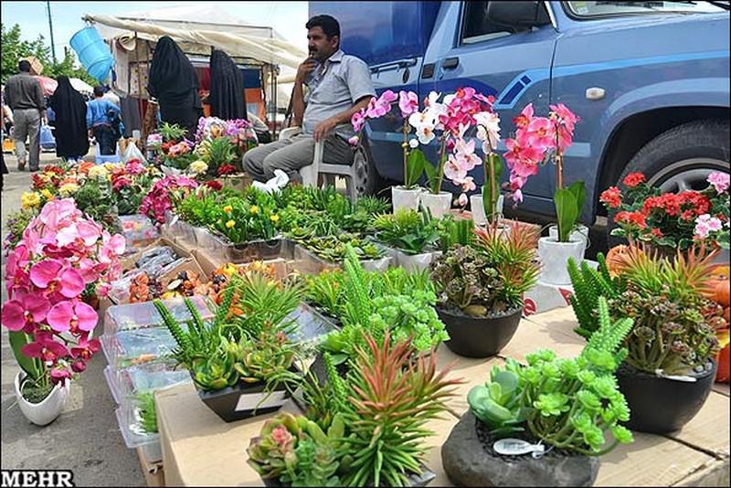جمعه-بازار-و-پل-تاریخی_13