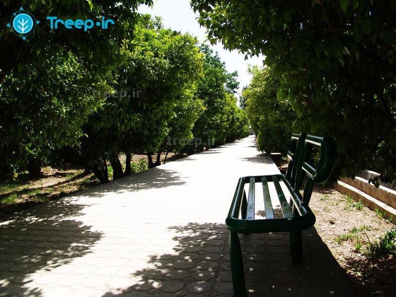 باغ-دلگشا_4