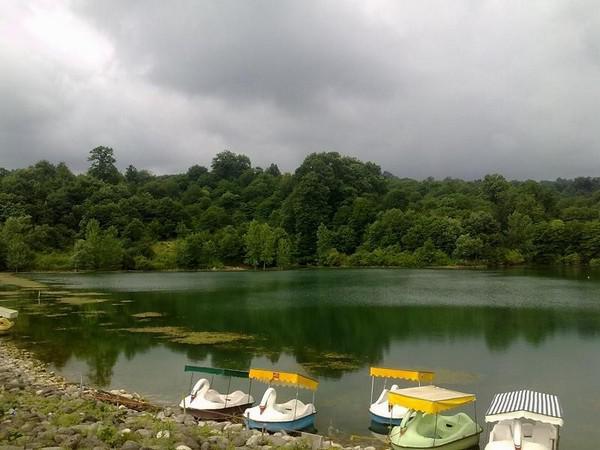 دریاچه-و-جنگل-الیمالات_4
