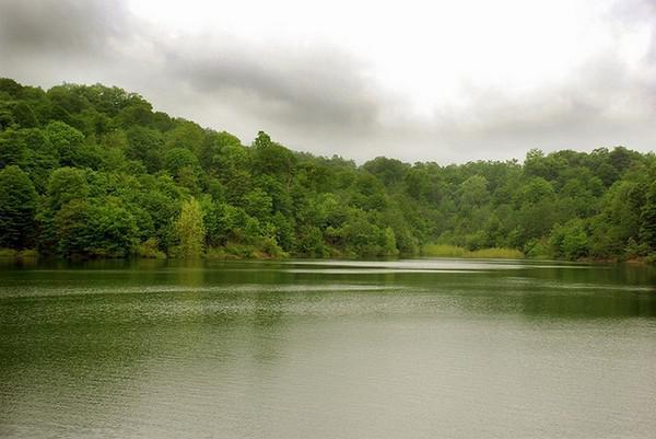 دریاچه-و-جنگل-الیمالات_2