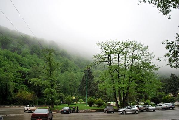 پارک-جنگلی-نهارخوران_5