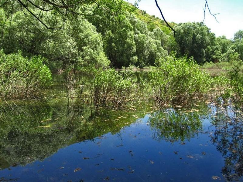 دریاچه-گهر-کوچک_1