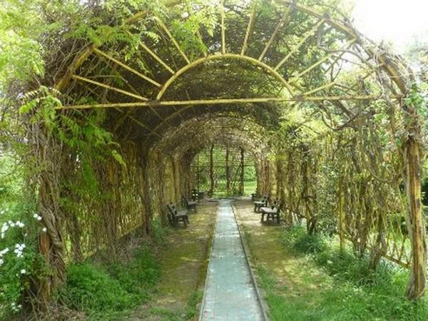 باغ-اکولوژی-نوشهر_37