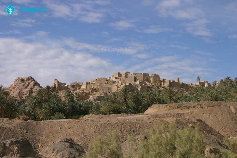 روستای-نایبند_8