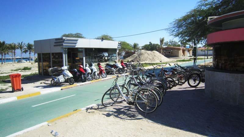 دوچرخه-سواری_5