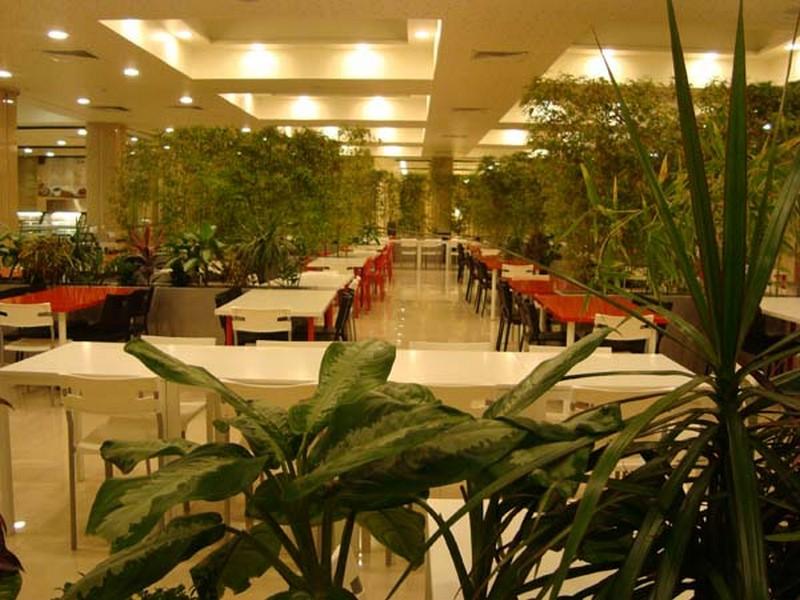 رستوران-دامون_6