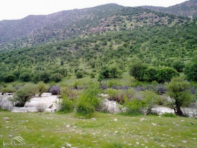 روستای-کاکارضا_4