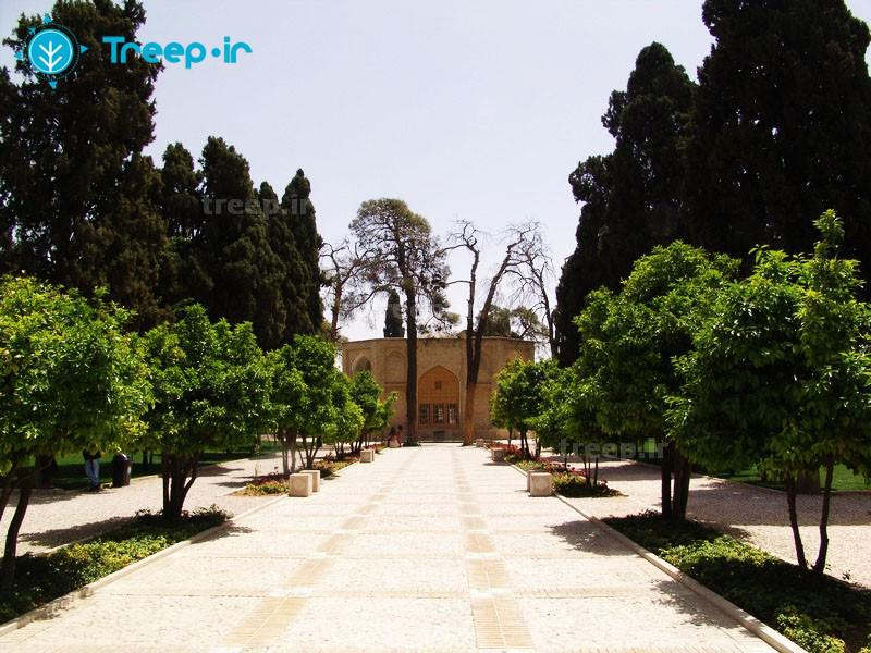 باغ-جهاننما_2