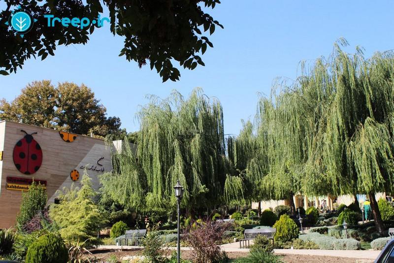 پارک-ایران-زمین_1