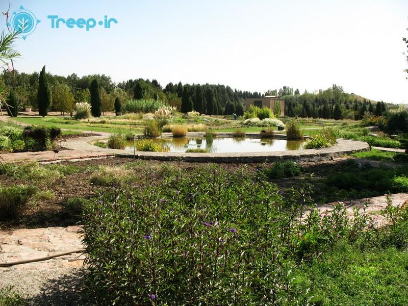 باغ-گياهشناسي-ملي-ايران_15