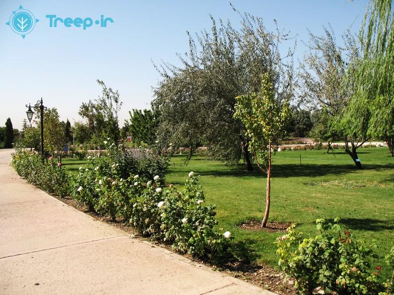 باغ-گياهشناسي-ملي-ايران_2