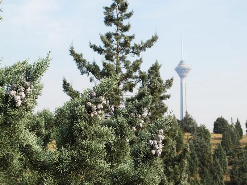 بوستان-پردیسان-_13