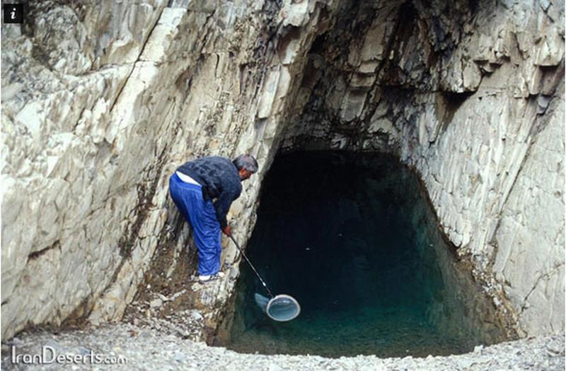 غار--ماهی-کور_8