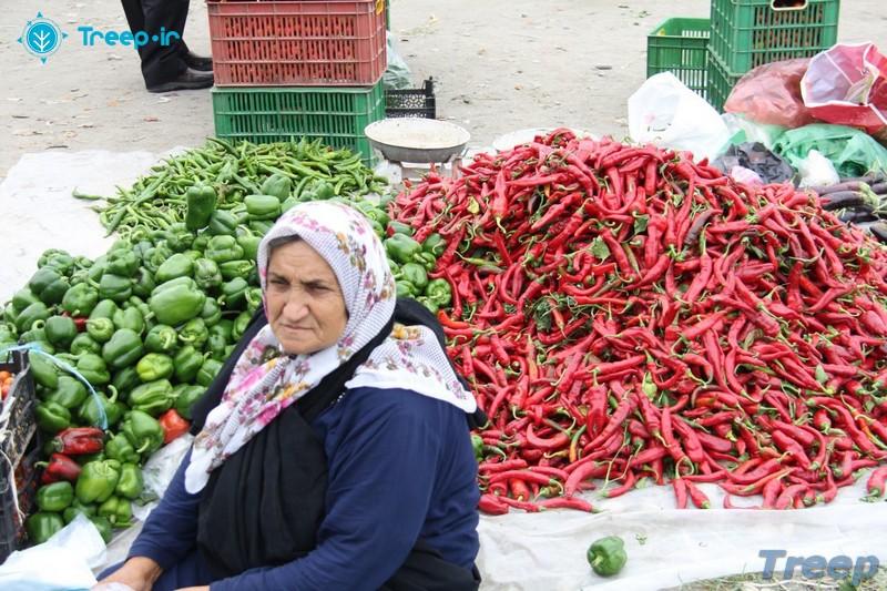 بازار-روز-نوشهر_8