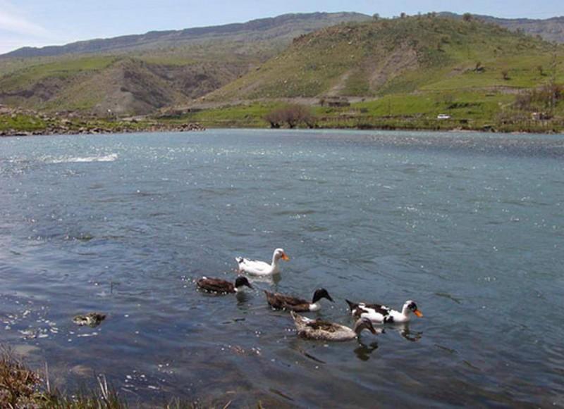 دریاچه-زریوار-_5