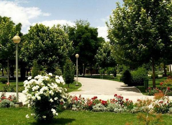 باغ-اکولوژی-نوشهر_24