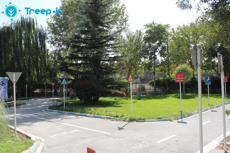 پارک-چمران_10