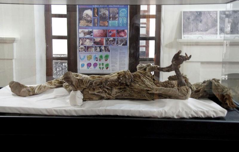 موزه-باستان-شناسی-(مرد-نمکی)_4