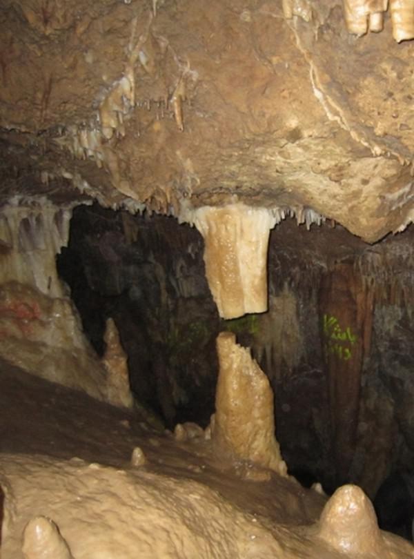 غار-گل-زرد_6